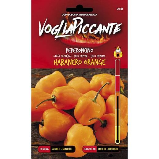 VOGLIAPICCANTE PEPPER SEEDS - HABANERO ORANGE
